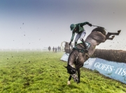 Advanced HM - Edward Mahon (Ned) - Kilkenny Photographic Society - head over heels