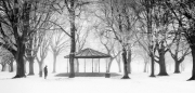 Advanced Gold - Tony Mc Donnell - Dundalk Photographic Society - A Winter Stroll in the Park
