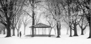 Tony Mc Donnell - Dundalk Photographic Society - A Winter Stroll in the Park - North East