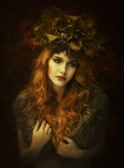 Colour Print Open - Advanced Gold and Overall Winner - PAUL REIDY - AUTUMN QUEEN - Blarney Photography Club