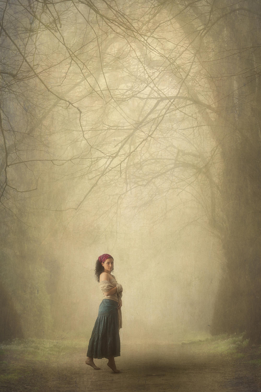 0520_Cpdi1_Arch-of-trees_2_Advanced