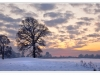 130_Snowy-Sunset