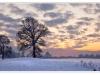 130_Snowy-Sunset