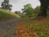 146_Autumn-in-Birr