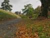 146_Autumn-in-Birr