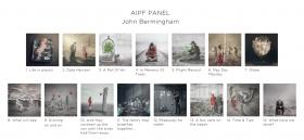 John Bermingham, AIPF, Dungarvan Camera Club