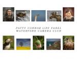 Patty Connor, LIPF, Waterford Camera Club