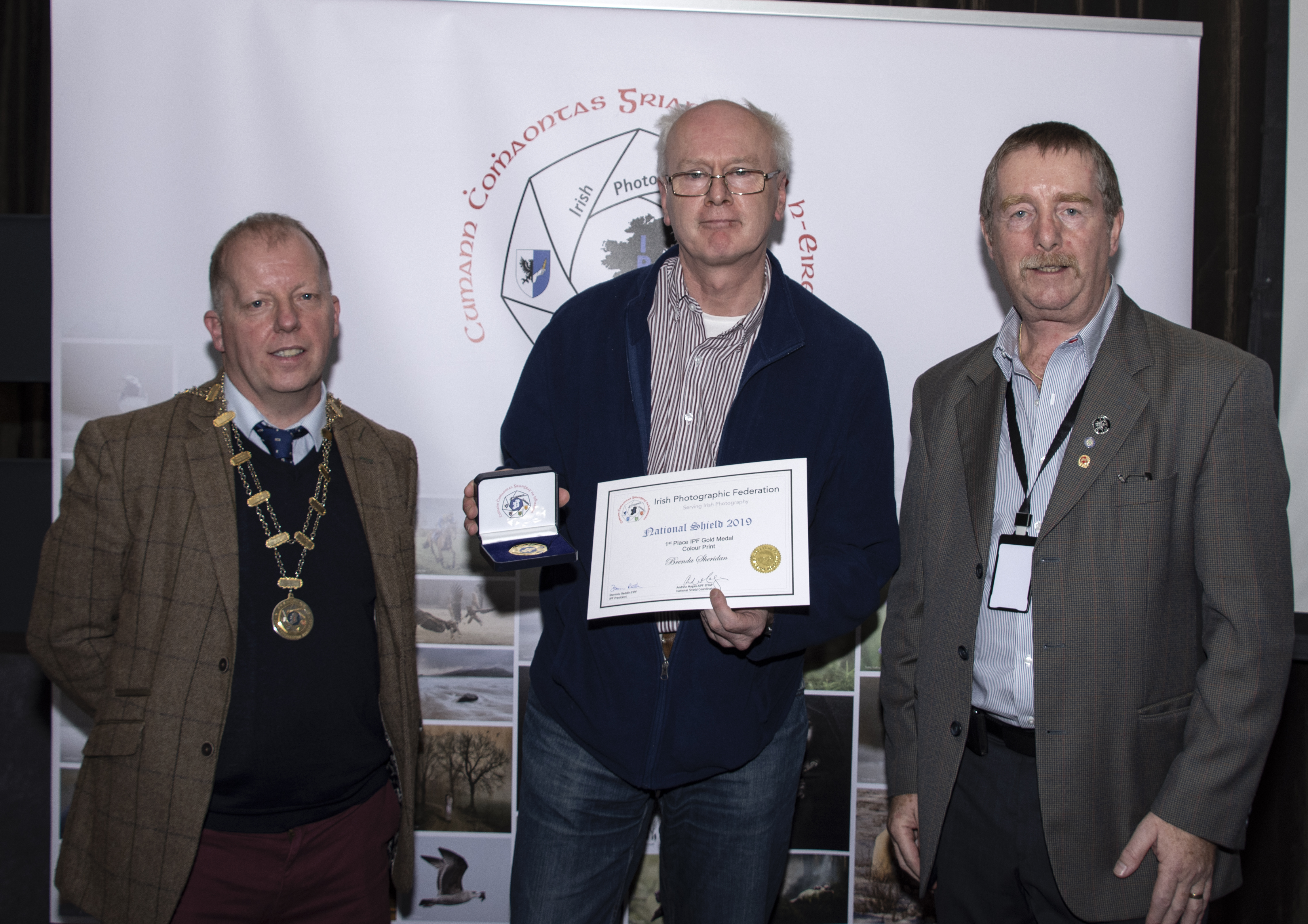 Colour, IPF Gold Medal Plus Certificate Brenda Sheridan – 2 Frogs – Tallaght Photographic Society