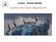 20.-Individual-Colour-Bronze-Medal