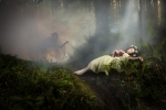 Gold Medal, Michael O'Sullivan, The Death of Giselle, Cork Camera Group