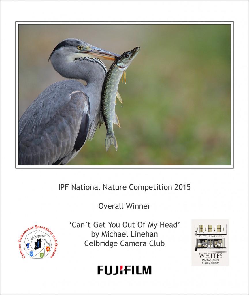nature winner 2015