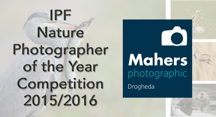 IPF Nature Photographer of the Year 2015/2016 – National Finals