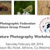 IPF Nature Group – Midlands Workshop