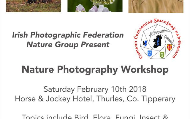 IPF Nature Group – Workshop